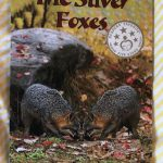 The Silver Foxes Now on Kindle